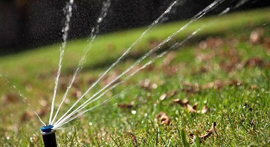 irrigation shot