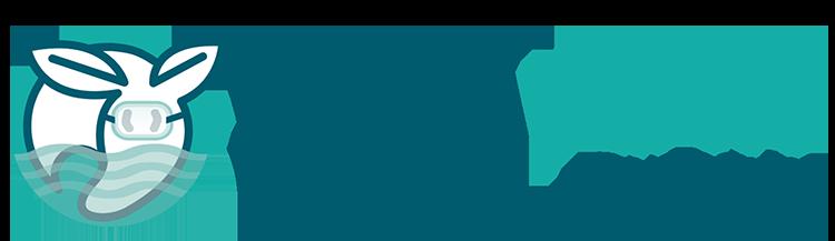 YV_PoolService_Logos banner